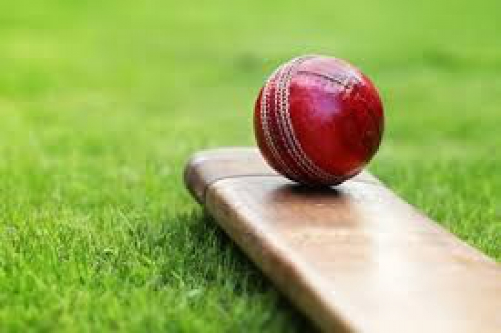 Twee spelers Hermes DVS in nationale cricketselectie